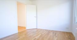 1206 – Moderne rækkehus i Kokkedal