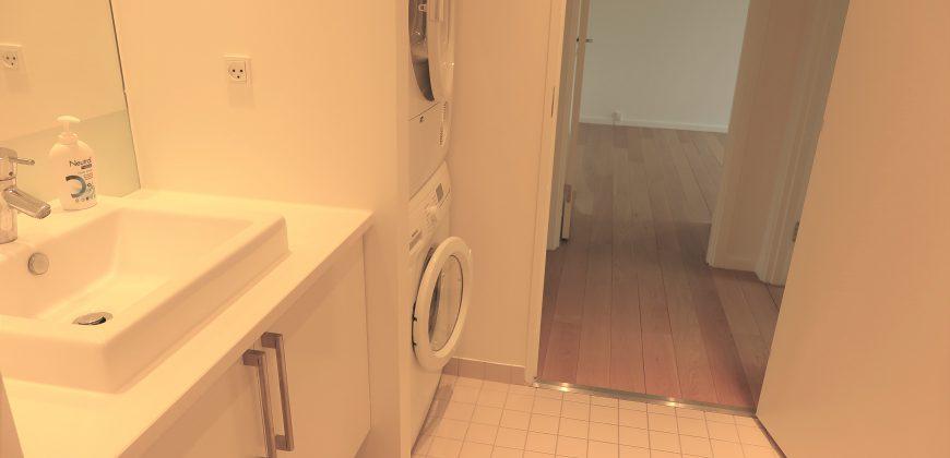 1292 – Fantastic apartment at Amerika Plads
