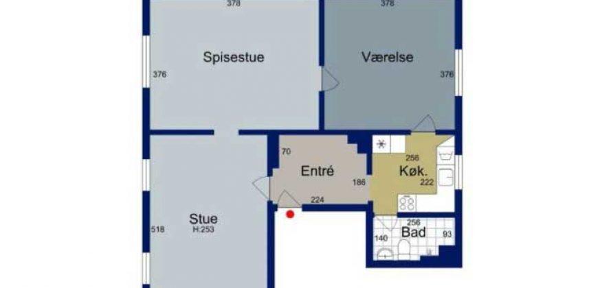 1040 – Unik lejlighed i Borgergade