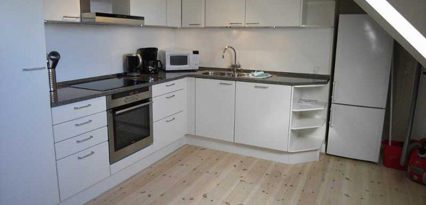1037 – Furnished apartment Hellerup
