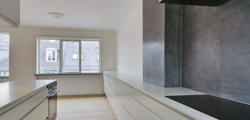 1064 – Lovely penthouse in the center