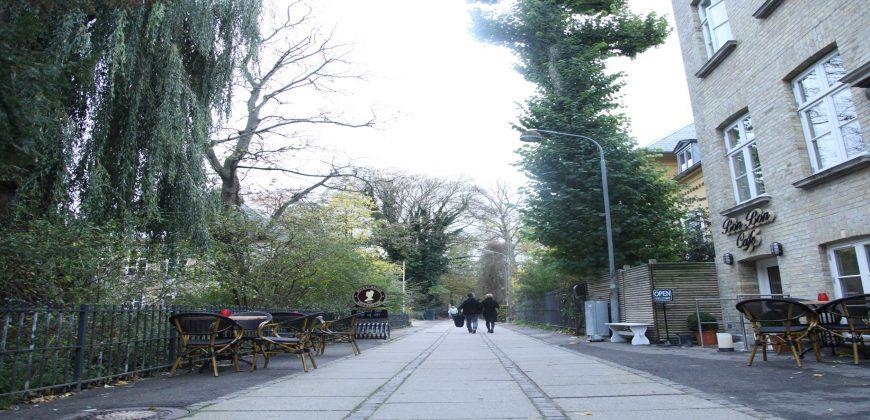 1060 – Unik lejlighed på Frederiksberg