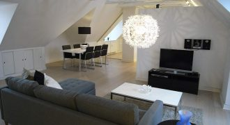 1088 – Renoveret lejlighed på Frederiksberg