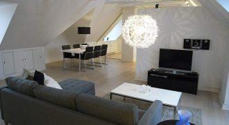 1088 – Renovated apartment at Frederiksberg