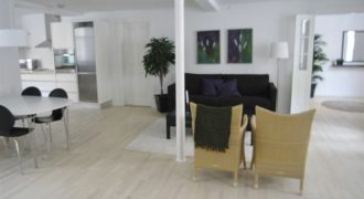 1117 – Lovely apartment in the city center