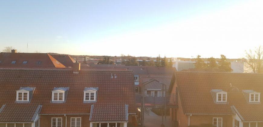 1133 – God lejlighed i Birkerød