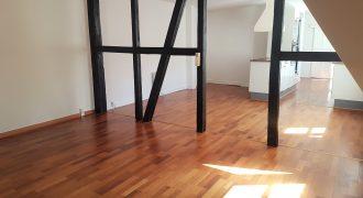 1148 – Fantastic apartment in the center