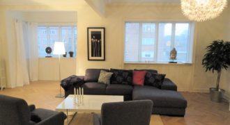 1174 – Nice furnished apartment in Hellerup
