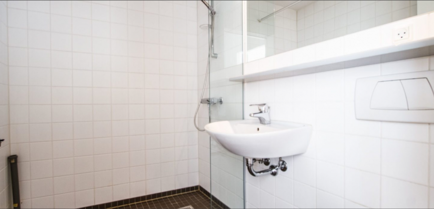 1210 – Great apartment at Frederiksberg