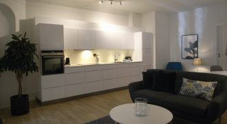 1145 – Smuk lejlighed i centrum
