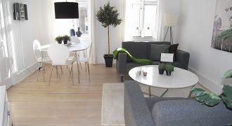 1233 – Dejlig lejlighed ved Nyhavn