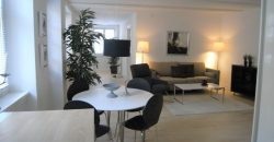 1237 – Furnished apartment in the city center