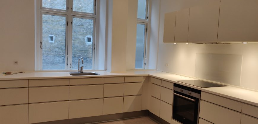 1244 – Fantastic apartment at Trianglen