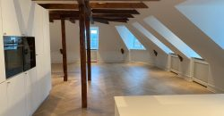 1414 – Amazing Penthouse at Gammelkongevej