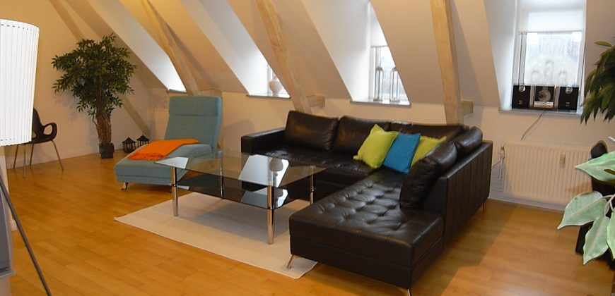 1533 – Two bedroom apartment on Gammeltoftsgade
