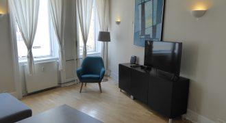 1564 – Furnished apartment in Copenhagen K